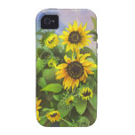 Vibrant Yellow, Watercolor Sunflowers iPhone 4 Cover