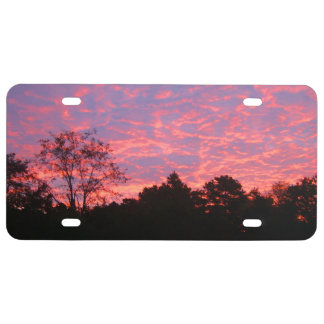 Vibrantly Pink Sunrise License Plate
