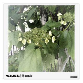 Viburnum. En la floración Vinilo