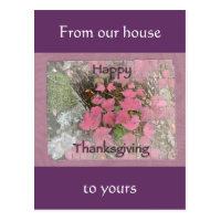 Viburnum Fall Foliage Happy Thanksgiving Items Postcard
