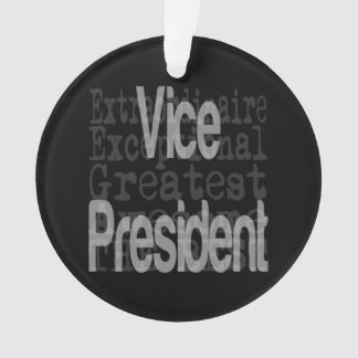 Vice Principal Extraordinaire Ornament
