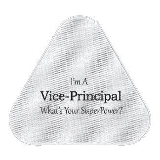 Vice-Principal Speaker