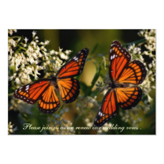 Viceroy Butterflies/Invitation to Renewal of Vows