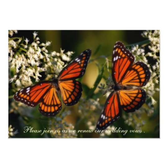 Viceroy Butterflies/Invitation to Renewal of Vows Card