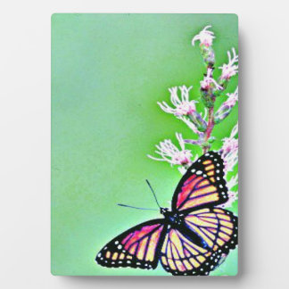 Viceroy Butterfly and Flowers Plaque