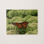 Viceroy Butterfly Beautiful Nature Photography Jigsaw Puzzle