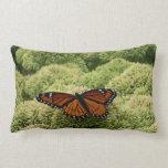 Viceroy Butterfly Beautiful Nature Photography Lumbar Pillow