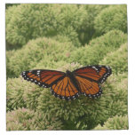 Viceroy Butterfly Beautiful Nature Photography Napkin