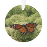 Viceroy Butterfly Beautiful Nature Photography Ornament