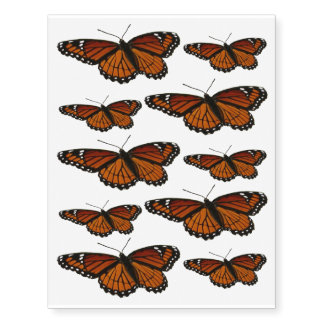Viceroy Butterfly Beautiful Nature Photography Temporary Tattoos