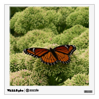Viceroy Butterfly Beautiful Nature Photography Wall Decal