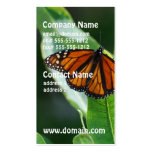 Viceroy Butterfly Double-Sided Standard Business Cards (Pack Of 100)