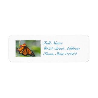 Viceroy Butterfly Return Address Label