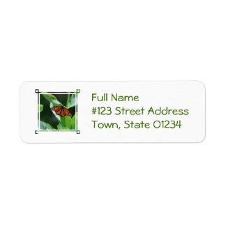 Viceroy Butterfly Return Address Labels