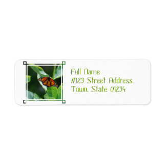 Viceroy Butterfly Labels