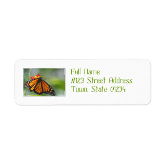 Viceroy Butterfly Custom Return Address Label
