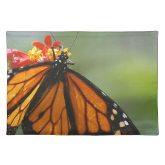 Viceroy Butterfly Place Mats