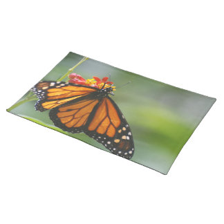 Viceroy Butterfly Placemat