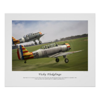 Vichy Fledglings Poster