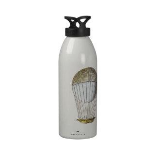 Vicotorian Hot Air Balloon Water Bottle