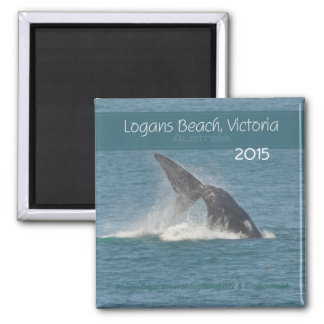 Victoria Australia Whale Magnet Change Year