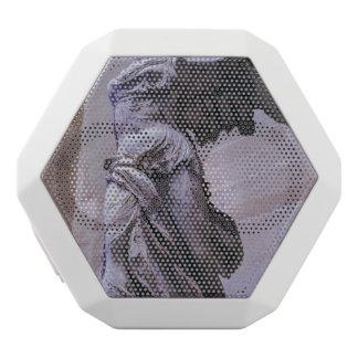 Victoria coa alas de Samothrace, Louvre, París Altavoz