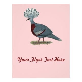Victoria coronó la paloma tarjetas publicitarias