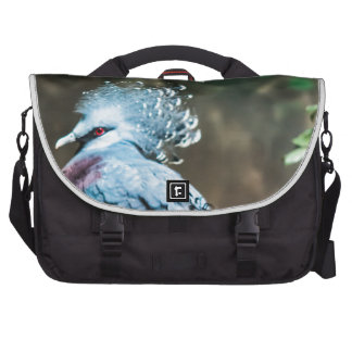 Victoria Crested Pigeon Commuter Bags
