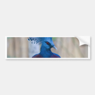 Victoria Crowned Pigeon Bumper Sticker