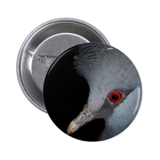 Victoria Crowned Pigeon Pin