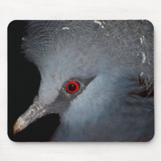 Victoria Crowned Pigeon Mousepads
