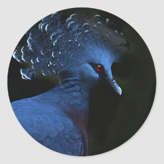 Victoria Crowned Pigeon Sticker