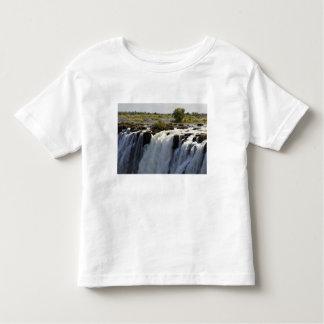 Victoria Falls, Zambesi River, Zambia. 2 T Shirt