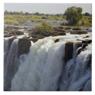 Victoria Falls, Zambesi River, Zambia. 2 Tile
