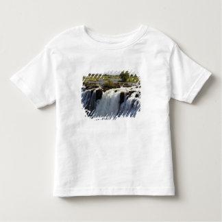 Victoria Falls, Zambesi River, Zambia. 2 Toddler T-shirt