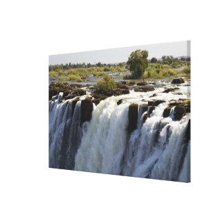 Victoria Falls, Zambesi River, Zambia. Canvas Print