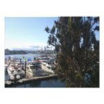 Victoria Harbor Photo Print
