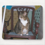 Victoria on chair mouse pads