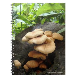 Victoria Peak- Mushrooms Notebook
