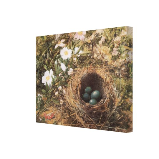 Victorian Art, Birds Nest and Dog Roses by JW Hill Canvas Print