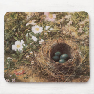 Victorian Art, Birds Nest and Dog Roses by JW Hill Mouse Pad