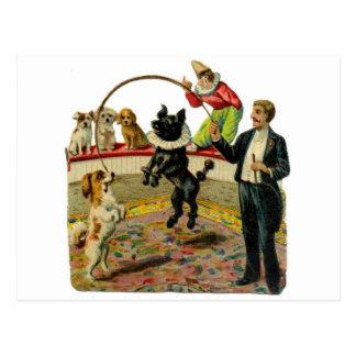 Victorian Circus Dogs, Trainer Clown Postcard