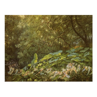 Victorian Fairies, Under the Dock Leaves by Doyle Postcard