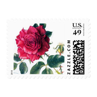 Victorian Floral Illustration Postage