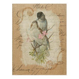 Victorian French Love Birds Love Song Postcard