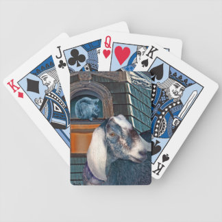 Victorian Friends Cute Goat and Squirrel Fantasy Bicycle Playing Cards