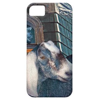 Victorian Friends Cute Goat and Squirrel Fantasy iPhone SE/5/5s Case