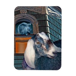 Victorian Friends Cute Goat and Squirrel Fantasy Rectangular Photo Magnet