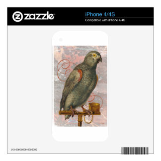 Victorian Gray Parrot Decals For The iPhone 4S