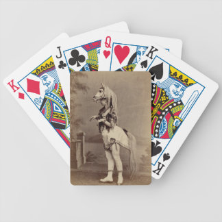 Victorian Horse Costume Daguerreotype/Photo Bicycle Playing Cards